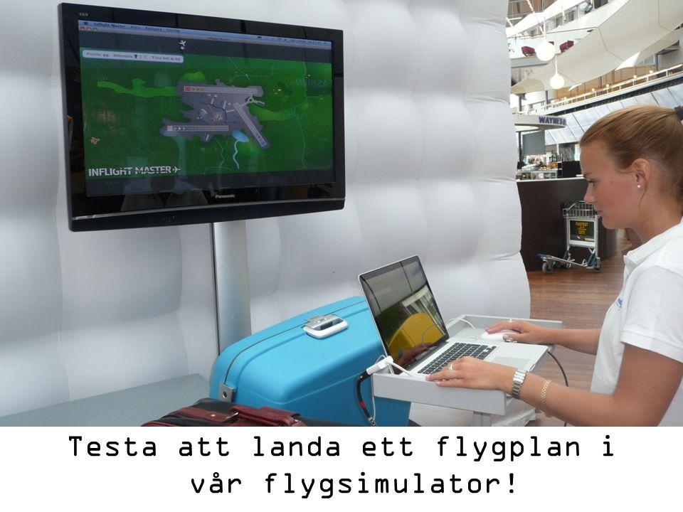 Testa att landa ett flygplan i vår flygsimulator!