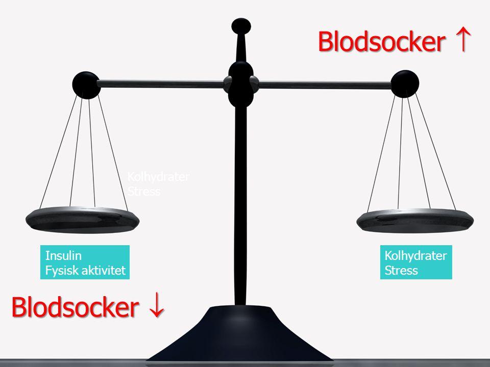 Kolhydrater Stress Kolhydrater Stress Insulin Fysisk aktivitet Blodsocker  Blodsocker 