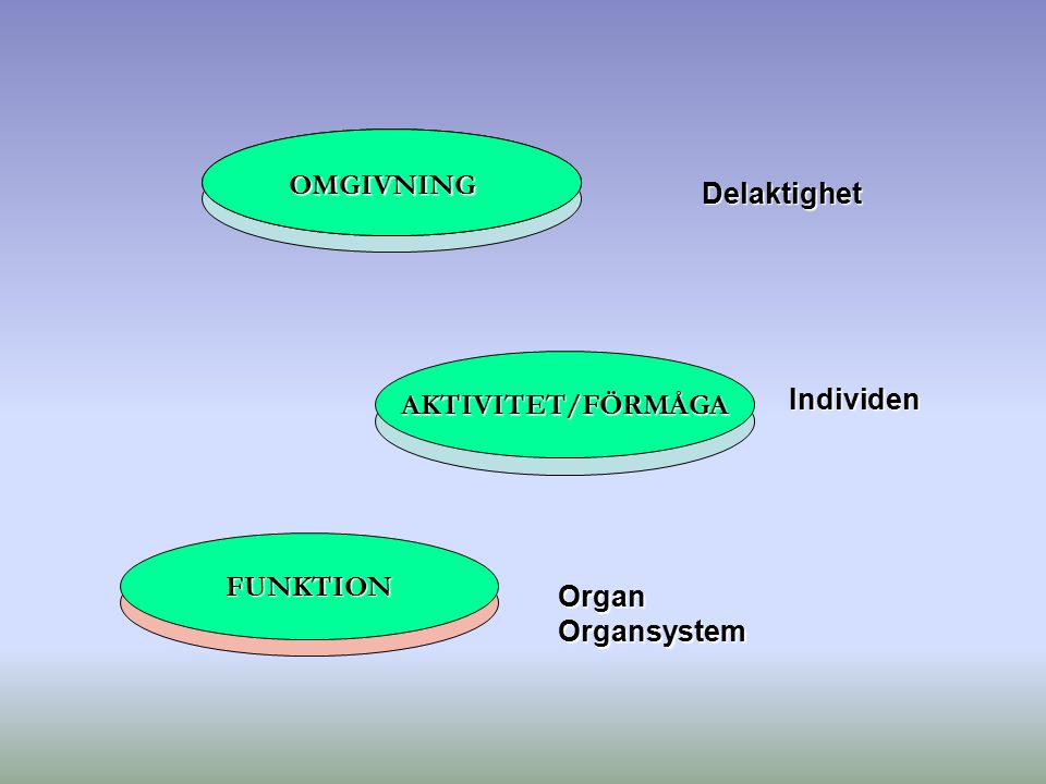FUNKTION AKTIVITET/FÖRMÅGA Organ Organsystem Individen Delaktighet OMGIVNING