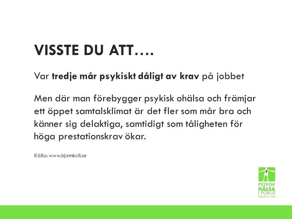 VISSTE DU ATT….