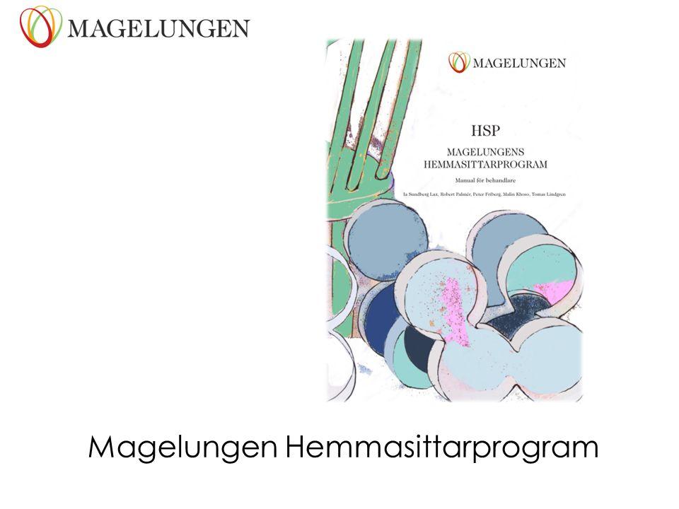 Magelungen Hemmasittarprogram