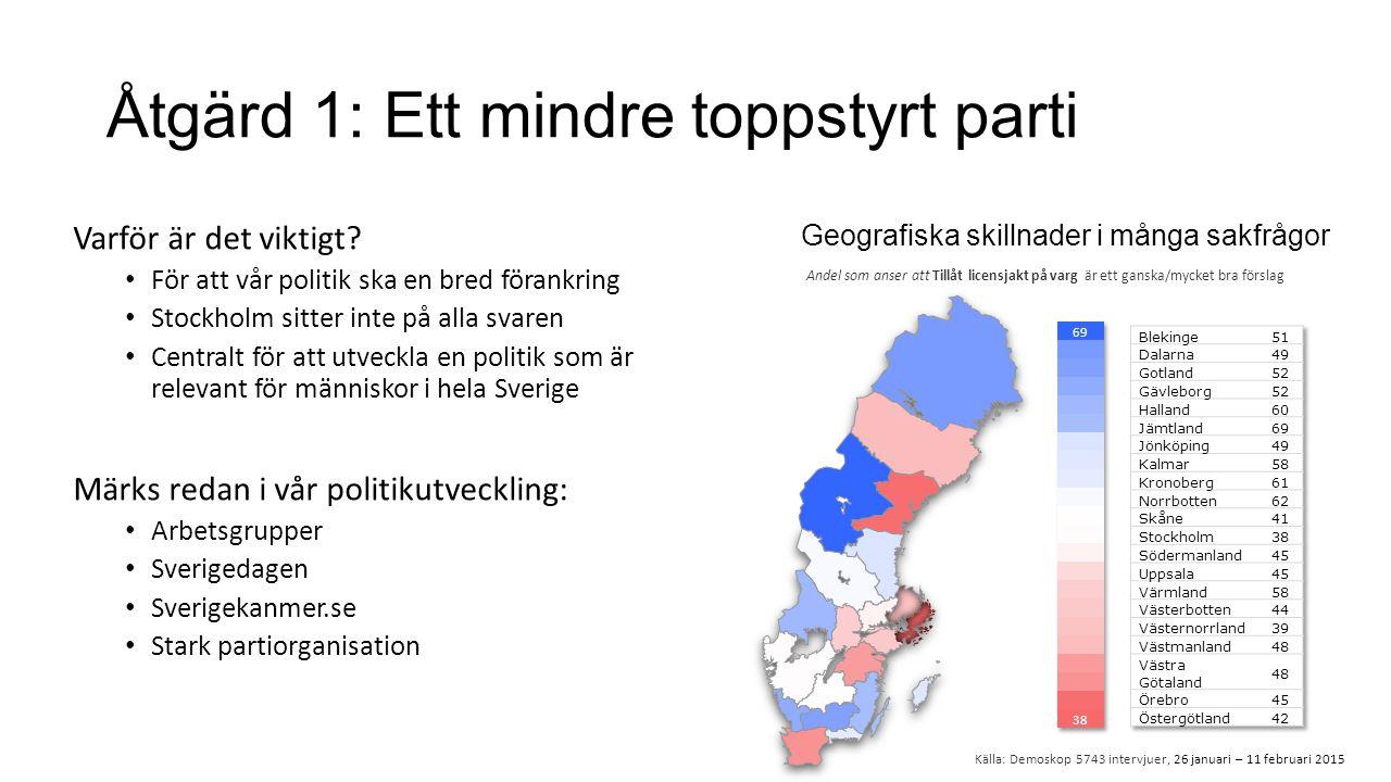 Åtgärd 1: Ett mindre toppstyrt parti Varför är det viktigt.