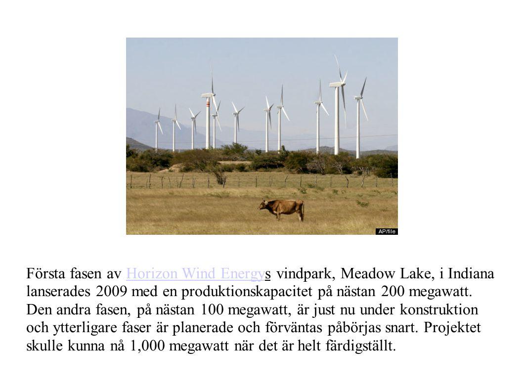 Första fasen av Horizon Wind Energys vindpark, Meadow Lake, i Indiana lanserades 2009 med en produktionskapacitet på nästan 200 megawatt.