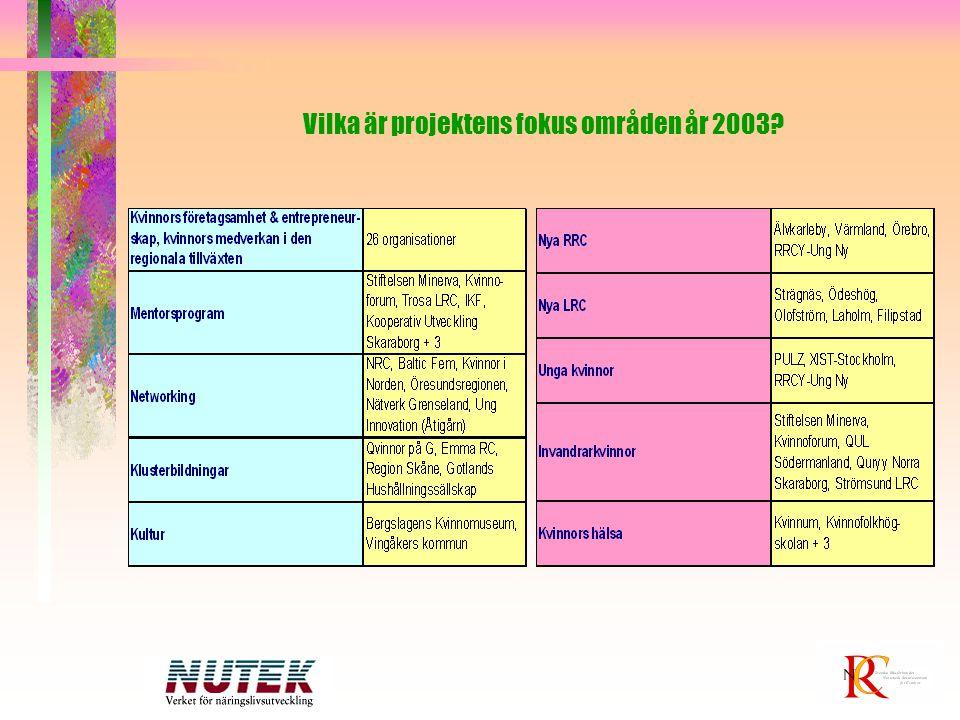 Vilka är projektens fokus områden år 2003?