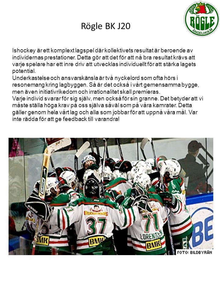 Ishockey är ett komplext lagspel där kollektivets resultat är beroende av individernas prestationer. Detta gör att det för att nå bra resultat krävs a