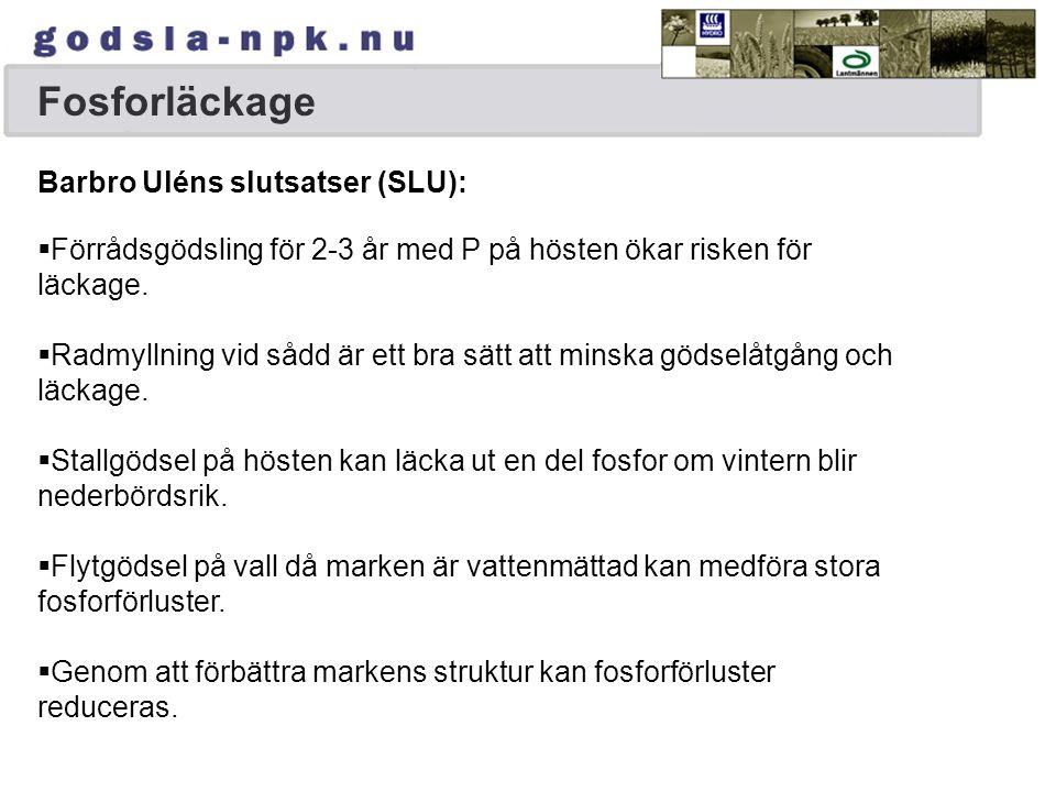 Fosforläckage Barbro Uléns slutsatser (SLU):  Förrådsgödsling för 2-3 år med P på hösten ökar risken för läckage.