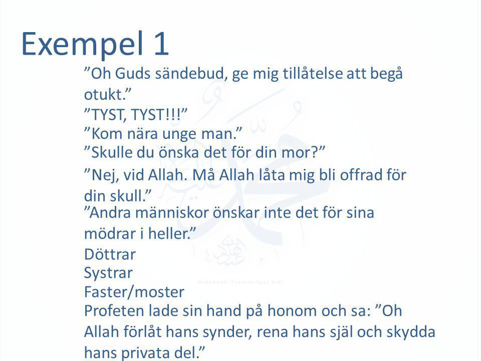 Exempel 2 As-Sâm 'Alaykum! Aisha sa: Jag förstod vad de sa och därför svarade jag tillbaks till dem: Och må död vara över och utöver detta må Guds förbannelse vara över er. 1 Profeten sa till Aisha: Ta det lugnt oh Aishah för sannerligen älskar Allah de som ömmar och är milda i varje situation. Aishah sa till Profeten: Hörde du inte vad dem sa? Profeten sa: och det samma för er Profetens visdom enligt författaren I en annan återberättelse sa han… 2