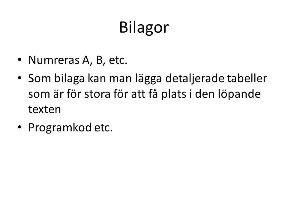 Bilagor Numreras A, B, etc. Som bilaga kan man lägga detaljerade tabeller som är för stora för att få plats i den löpande texten Programkod etc.