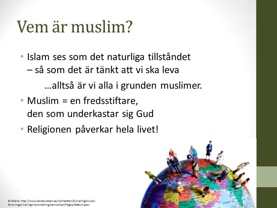 Vem är muslim? Islam ses som det naturliga tillståndet – så som det är tänkt att vi ska leva …alltså är vi alla i grunden muslimer. Muslim = en fredss