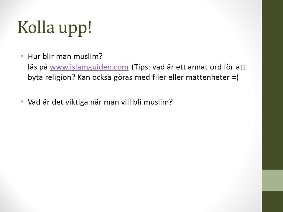 Kolla upp! Hur blir man muslim? läs på www.islamguiden.com (Tips: vad är ett annat ord för att byta religion? Kan också göras med filer eller måttenhe