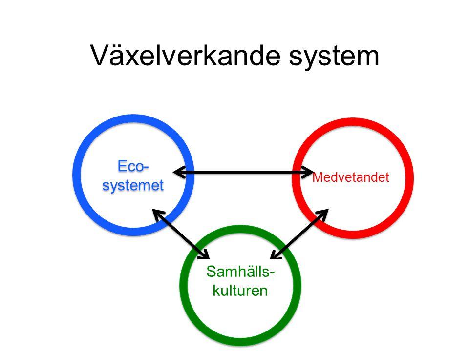 Växelverkande system Individen Medvetandet Eco- systemet Samhället Samhälls- kulturen