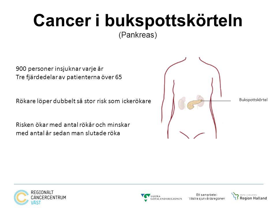Ett samarbete i Västra sjukvårdsregionen Cancer i bukspottskörteln (Pankreas) 900 personer insjuknar varje år Tre fjärdedelar av patienterna över 65 Rökare löper dubbelt så stor risk som ickerökare Risken ökar med antal rökår och minskar med antal år sedan man slutade röka Bukspottskörtel