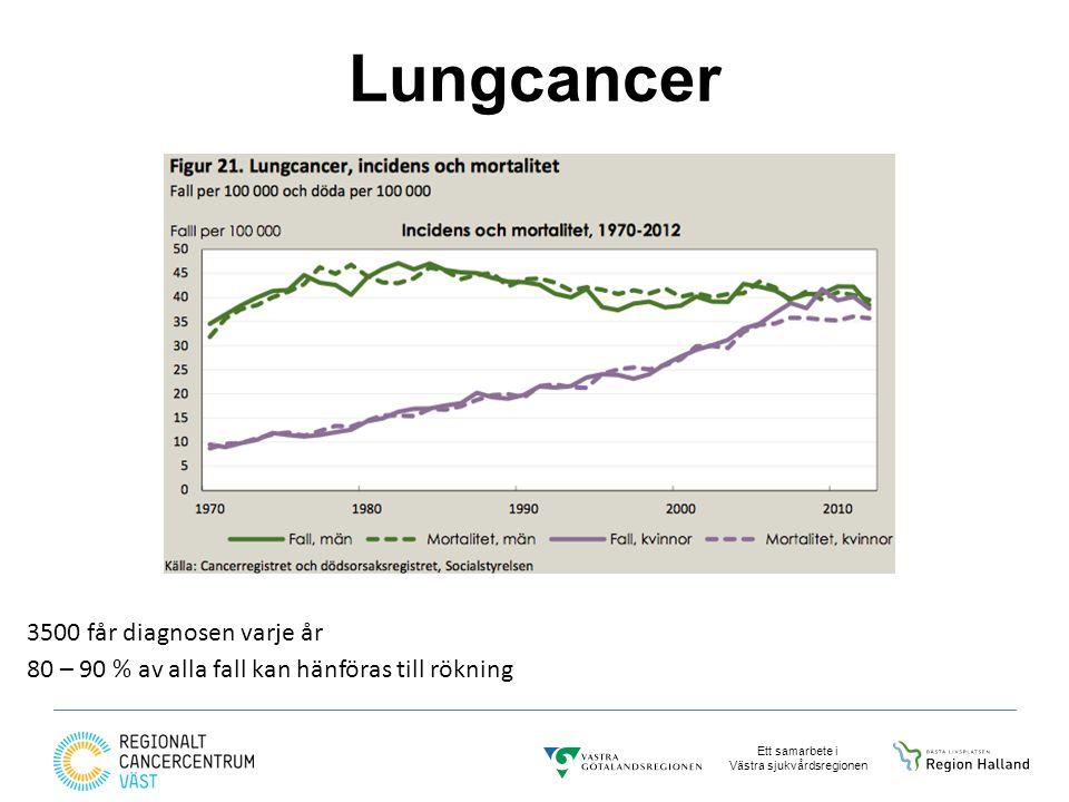 Ett samarbete i Västra sjukvårdsregionen Lungcancer 3500 får diagnosen varje år 80 – 90 % av alla fall kan hänföras till rökning