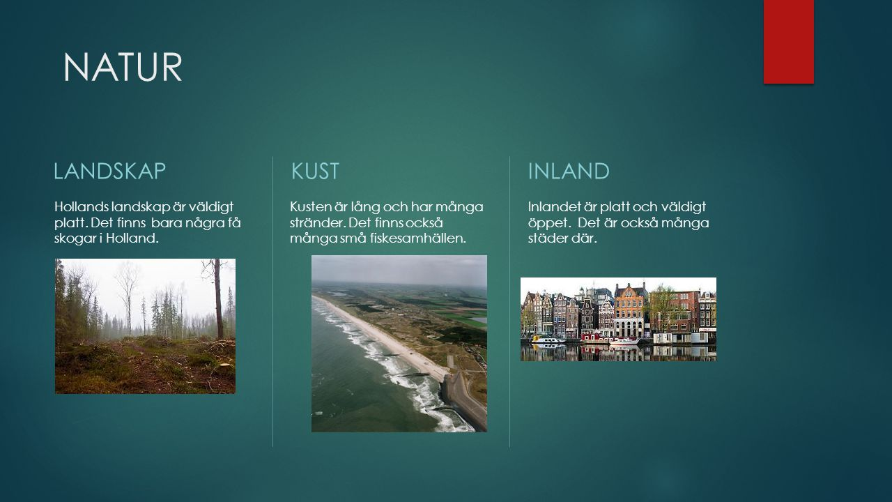 NATUR LANDSKAP Hollands landskap är väldigt platt.