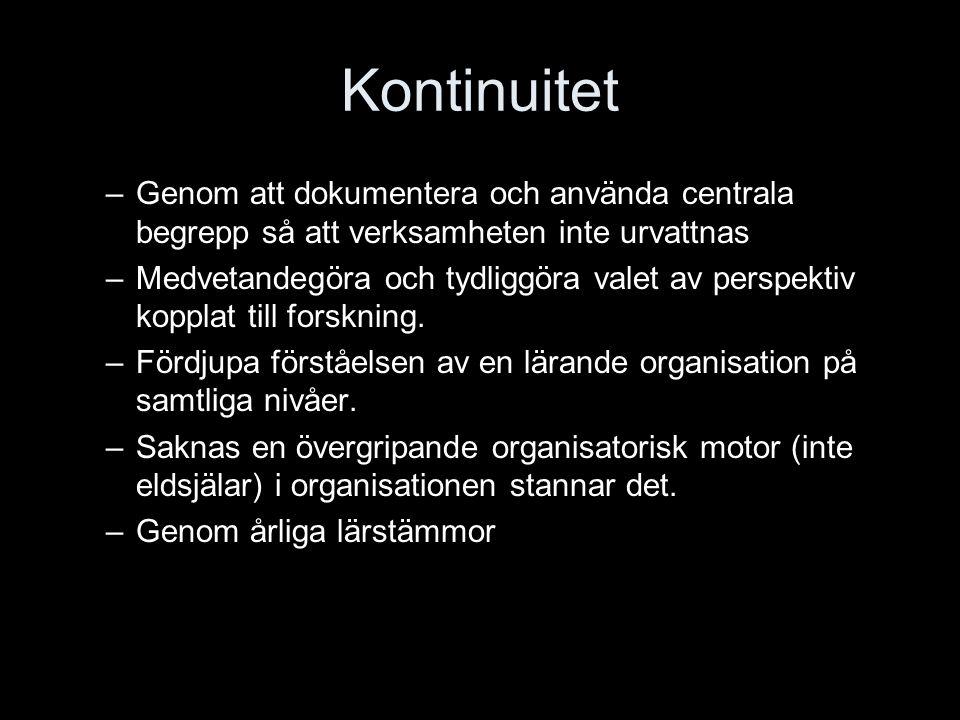 Kontinuitet –Genom att dokumentera och använda centrala begrepp så att verksamheten inte urvattnas –Medvetandegöra och tydliggöra valet av perspektiv