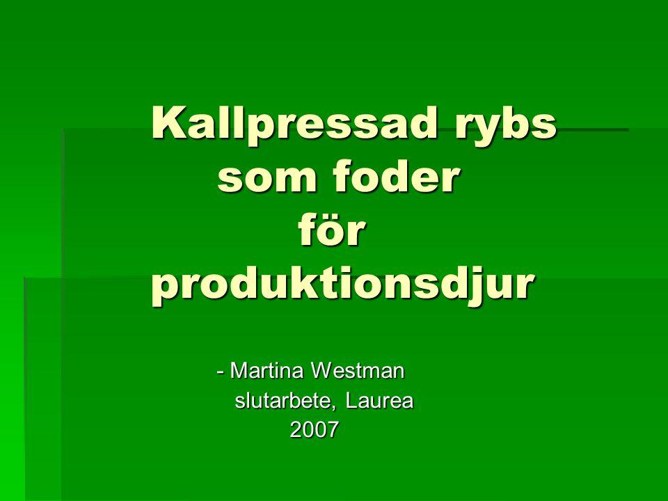 Kallpressad rybs som foder för produktionsdjur - Martina Westman slutarbete, Laurea slutarbete, Laurea 2007 2007
