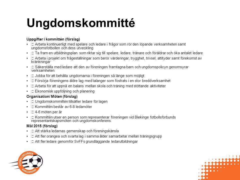 Ungdomskommitté Uppgifter i kommittén (förslag)  Arbeta kontinuerligt med spelare och ledare i frågor som rör den löpande verksamheten samt ungdomsfo