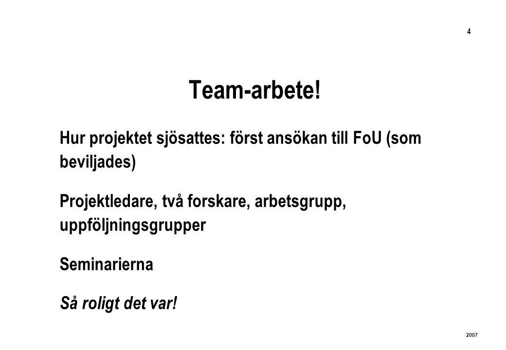 4 2007 Team-arbete.