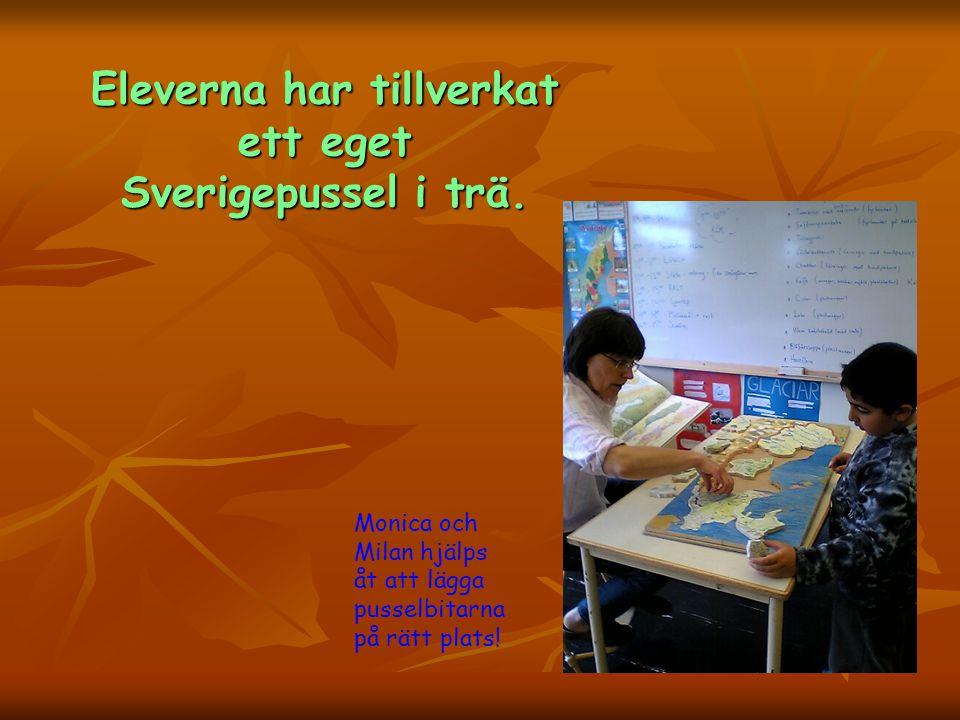 Eleverna har tillverkat ett eget Sverigepussel i trä.