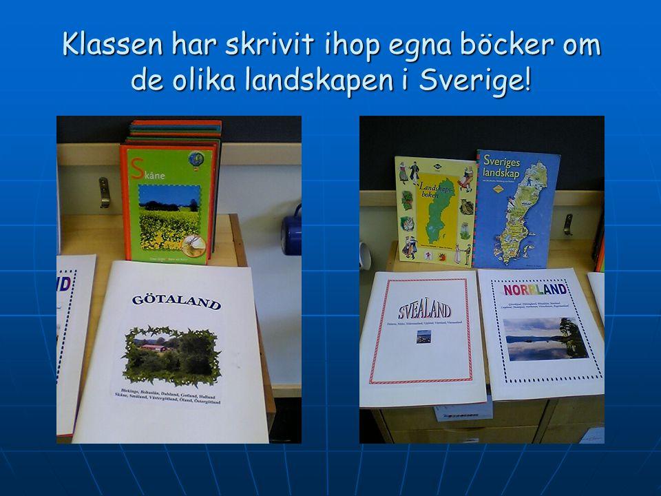 Konstverk gjorda av sönderklippta tidningar! Trana - VästergötlandMyren - Västerbotten