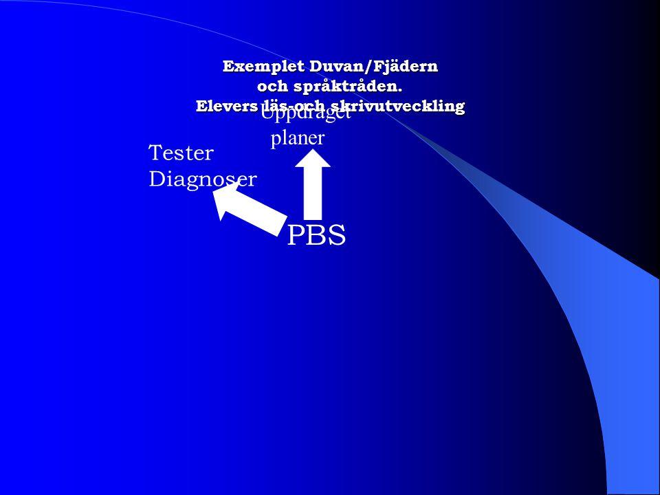 Exemplet Duvan/Fjädern och språktråden. Elevers läs-och skrivutveckling PBS Uppdraget planer Tester Diagnoser