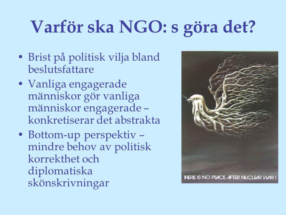 Varför ska NGO: s göra det.