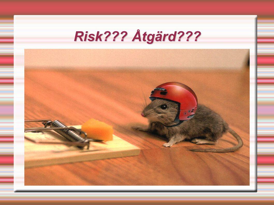 Risk??? Åtgärd???
