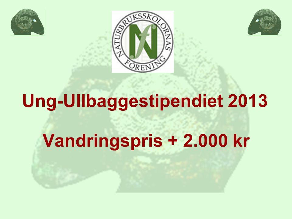 Ung-Ullbaggestipendiet 2013 Vandringspris + 2.000 kr