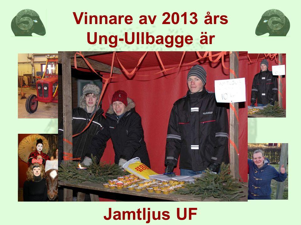 Vinnare av 2013 års Ung-Ullbagge är Jamtljus UF