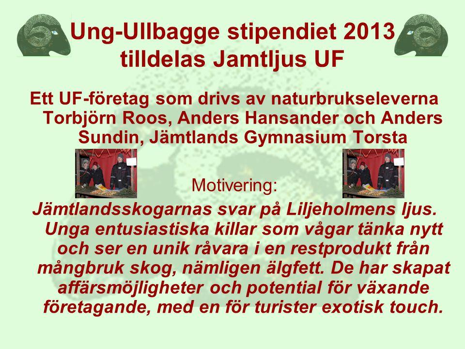Ung-Ullbagge stipendiet 2013 tilldelas Jamtljus UF Ett UF-företag som drivs av naturbrukseleverna Torbjörn Roos, Anders Hansander och Anders Sundin, Jämtlands Gymnasium Torsta Motivering: Jämtlandsskogarnas svar på Liljeholmens ljus.