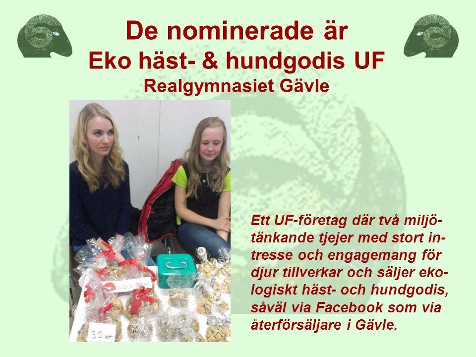 Ett UF-företag där två miljö- tänkande tjejer med stort in- tresse och engagemang för djur tillverkar och säljer eko- logiskt häst- och hundgodis, såväl via Facebook som via återförsäljare i Gävle.