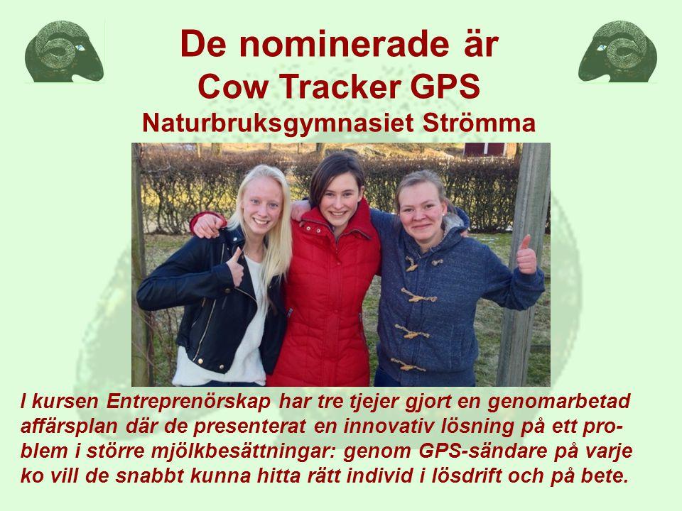 I kursen Entreprenörskap har tre tjejer gjort en genomarbetad affärsplan där de presenterat en innovativ lösning på ett pro- blem i större mjölkbesättningar: genom GPS-sändare på varje ko vill de snabbt kunna hitta rätt individ i lösdrift och på bete.