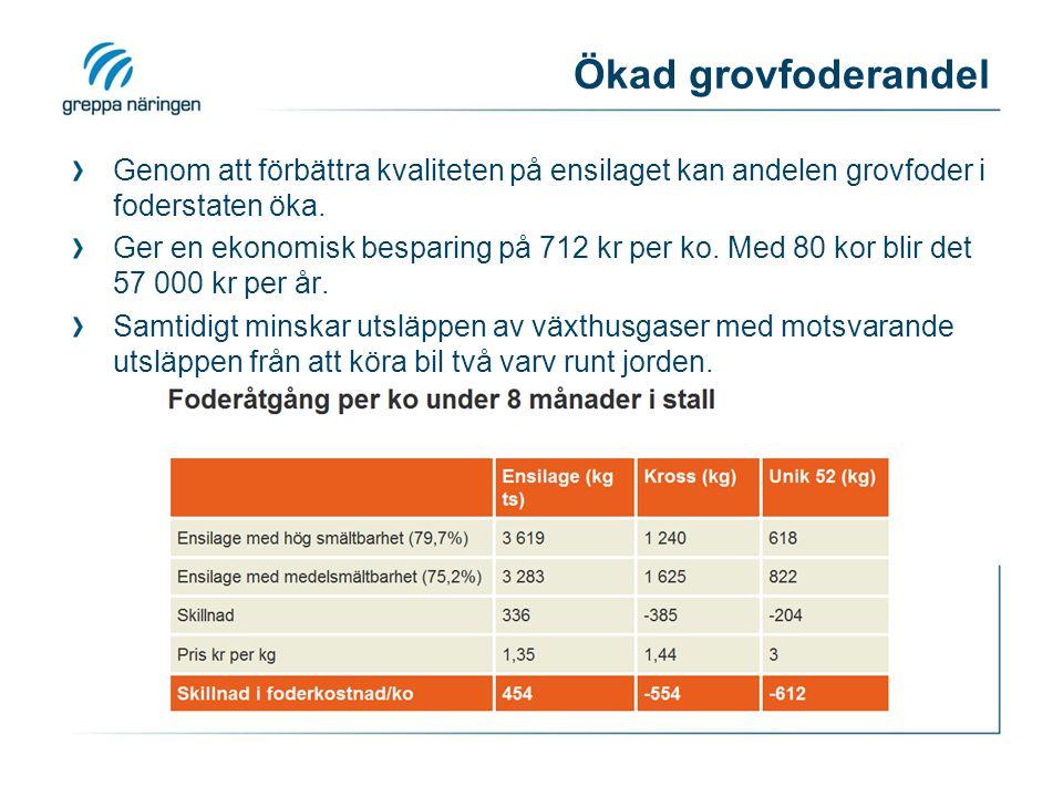 Ökad grovfoderandel Genom att förbättra kvaliteten på ensilaget kan andelen grovfoder i foderstaten öka. Ger en ekonomisk besparing på 712 kr per ko.