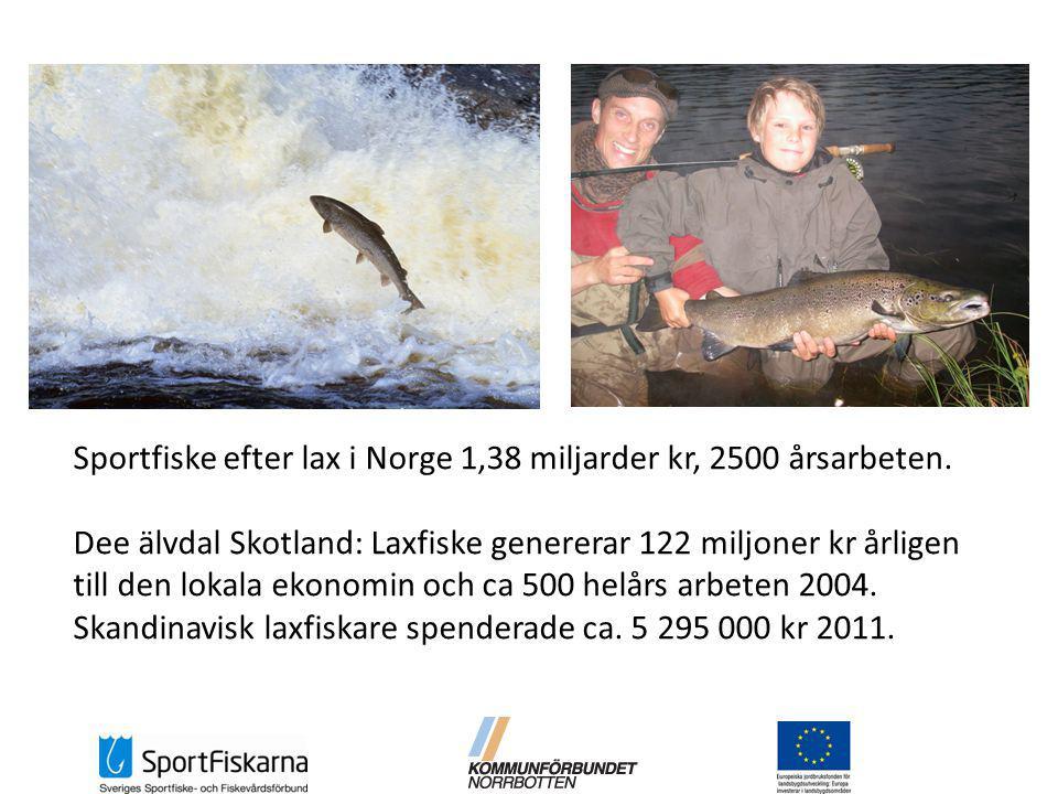Sportfiske efter lax i Norge 1,38 miljarder kr, 2500 årsarbeten.