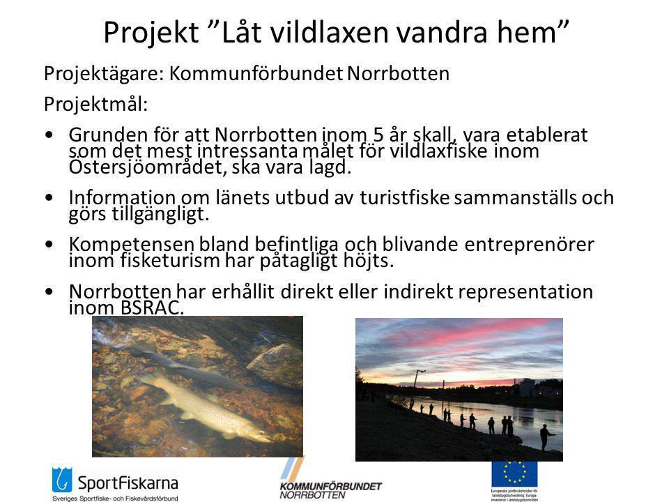 Projekt Låt vildlaxen vandra hem Projektägare: Kommunförbundet Norrbotten Projektmål: Grunden för att Norrbotten inom 5 år skall, vara etablerat som det mest intressanta målet för vildlaxfiske inom Östersjöområdet, ska vara lagd.
