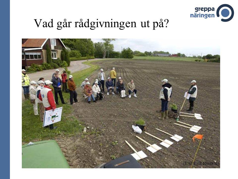 Vad går rådgivningen ut på? (foto:Erik Jönsson)