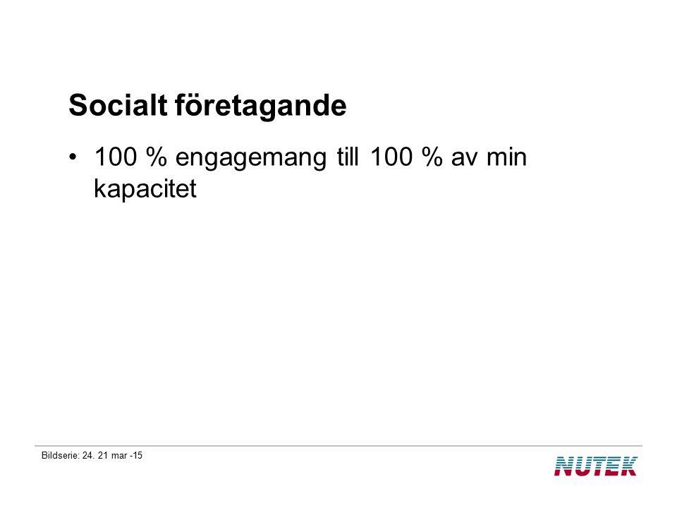 Bildserie: 24. 21 mar -15 Socialt företagande 100 % engagemang till 100 % av min kapacitet