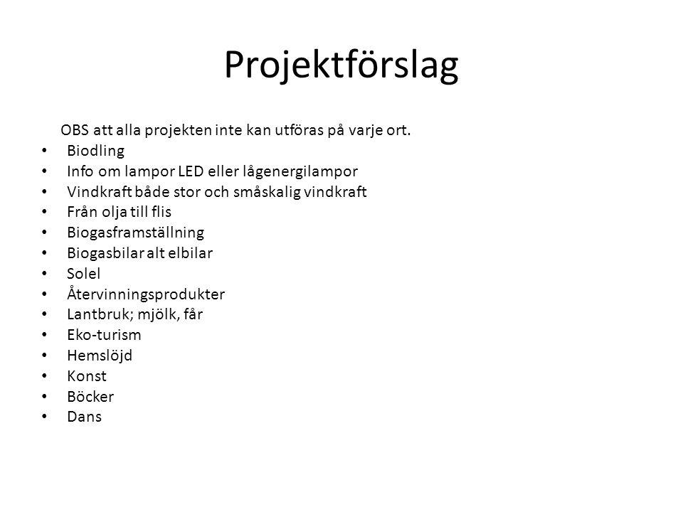 Projektförslag OBS att alla projekten inte kan utföras på varje ort. Biodling Info om lampor LED eller lågenergilampor Vindkraft både stor och småskal