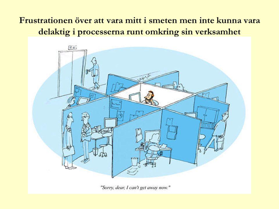 Frustrationen över att vara mitt i smeten men inte kunna vara delaktig i processerna runt omkring sin verksamhet