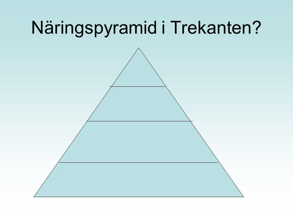 Näringspyramid i Trekanten?