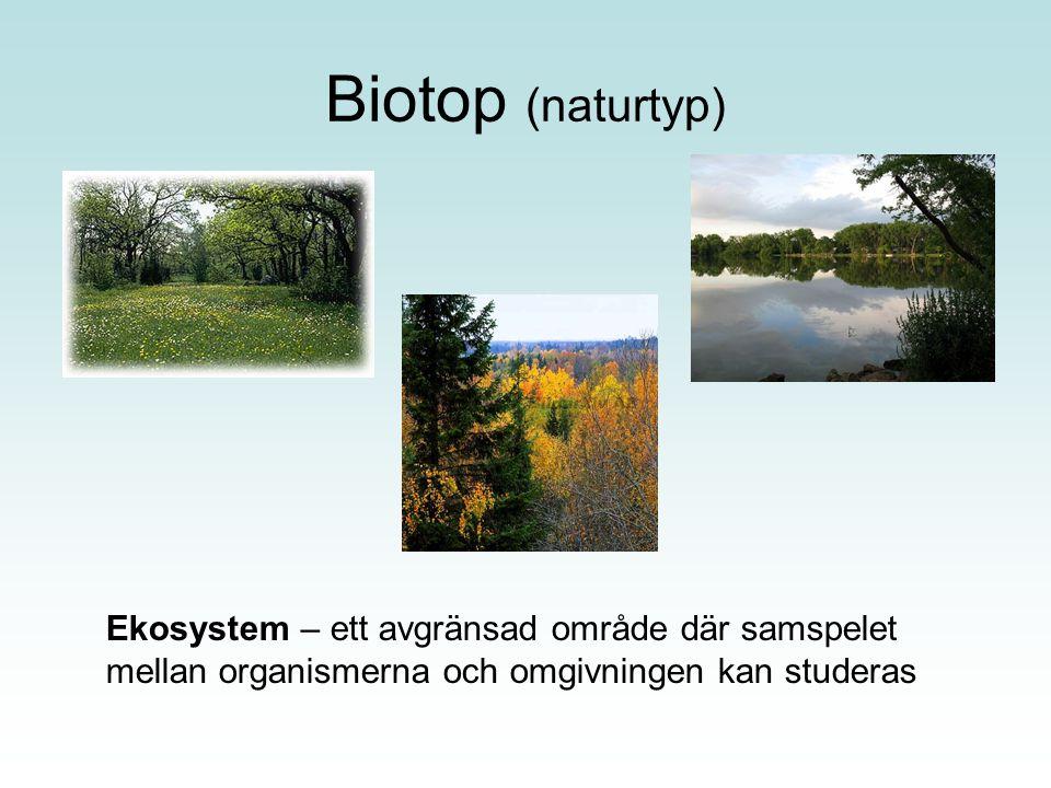 Biotop (naturtyp) Ekosystem – ett avgränsad område där samspelet mellan organismerna och omgivningen kan studeras