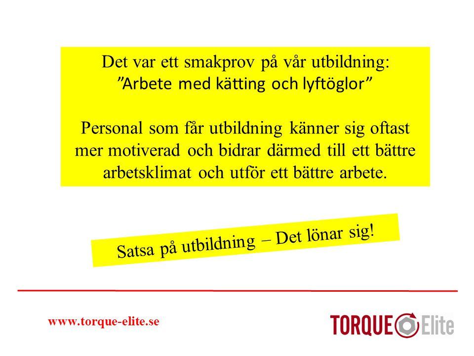 """www.torque-elite.se Det var ett smakprov på vår utbildning: """"Arbete med kätting och lyftöglor"""" Personal som får utbildning känner sig oftast mer motiv"""