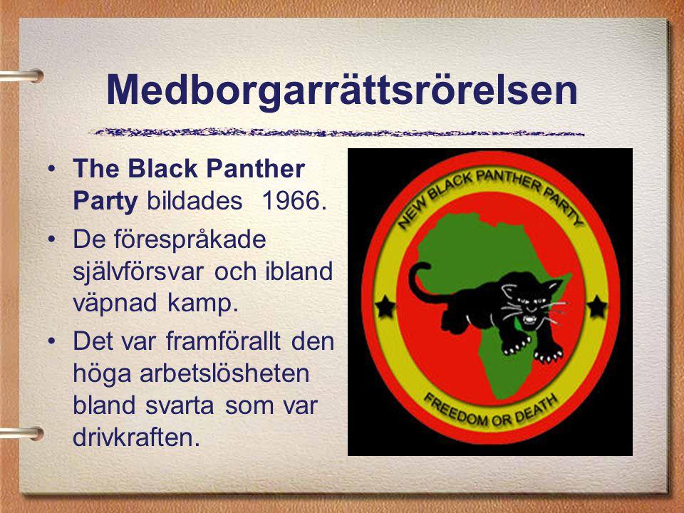 Medborgarrättsrörelsen The Black Panther Party bildades 1966. De förespråkade självförsvar och ibland väpnad kamp. Det var framförallt den höga arbets