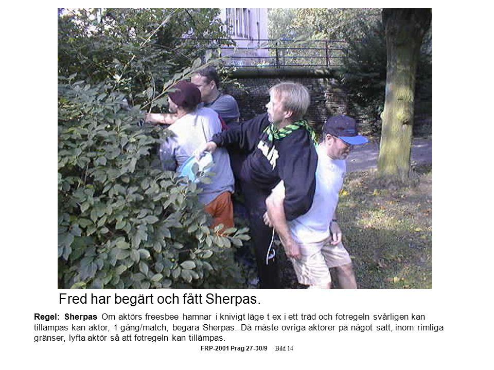 FRP-2001 Prag 27-30/9 Bild 14 Regel: Sherpas Om aktörs freesbee hamnar i knivigt läge t ex i ett träd och fotregeln svårligen kan tillämpas kan aktör, 1 gång/match, begära Sherpas.