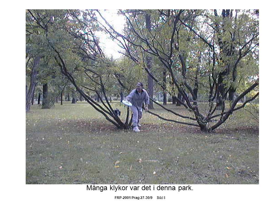 FRP-2001 Prag 27-30/9 Bild 8 Många klykor var det i denna park.