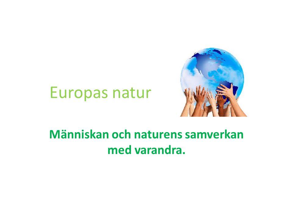 Europas natur Människan och naturens samverkan med varandra.