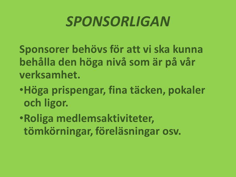 SPONSORLIGAN Sponsorer behövs för att vi ska kunna behålla den höga nivå som är på vår verksamhet.