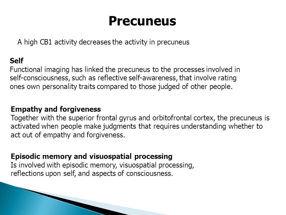  Anandamid är involverad i reglering av sinnesstämning, minne, aptit, smärta, kognition och känslor och att befästa fina ögonblick. Släcker ut urspru