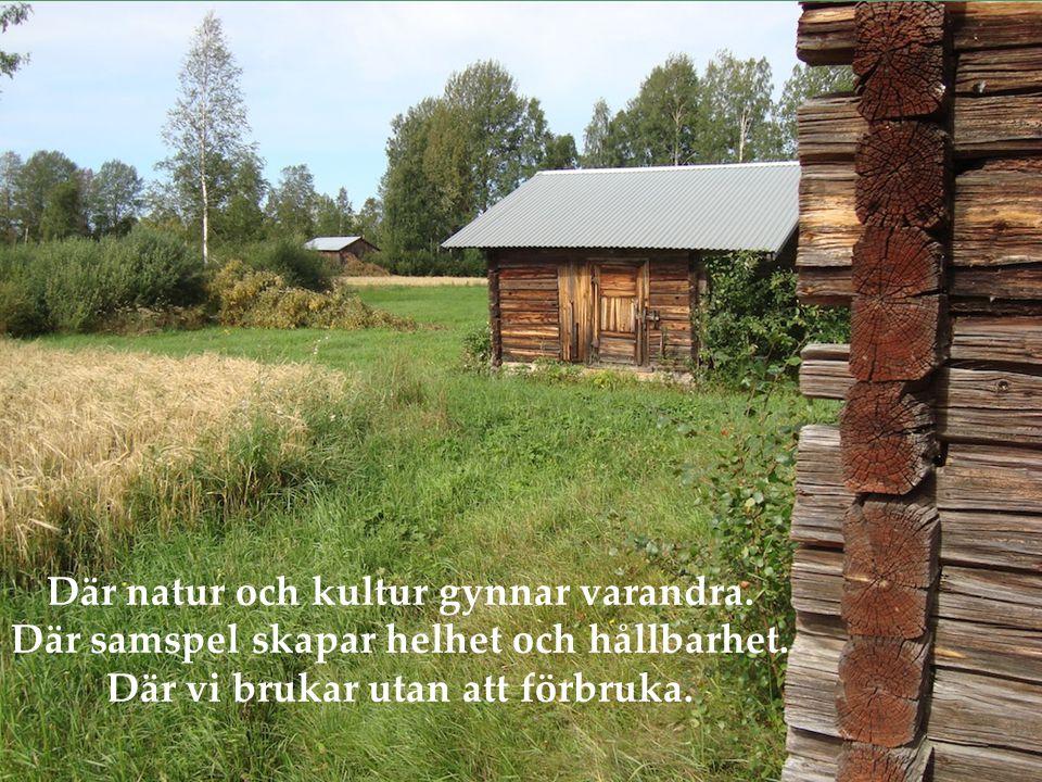 Där natur och kultur gynnar varandra. Där samspel skapar helhet och hållbarhet.