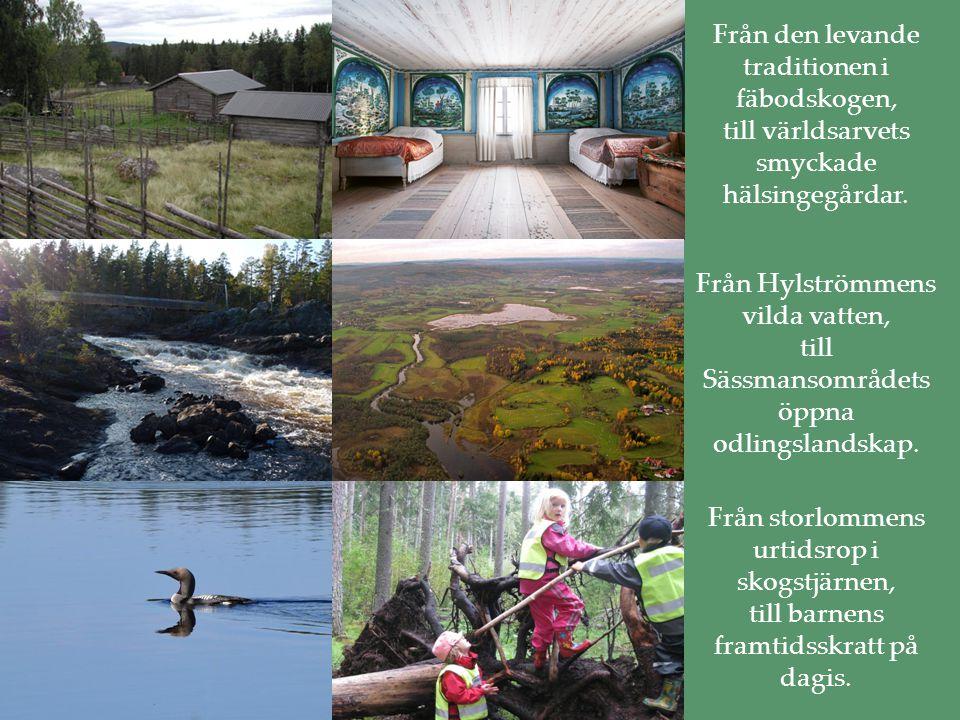 Bevara biologisk och kulturell mångfald, ekosystem och landskap.